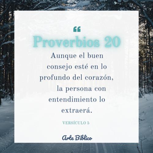 Devocional diario proverbios 20
